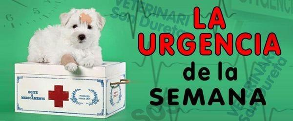URGENCIA-DE-LA-SEMANA-ENTRADA-BLOG