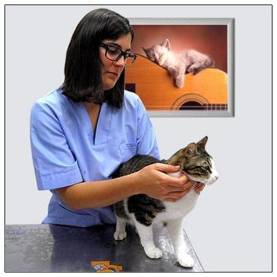 Dra. Fernanda Canoura  explorando a un paciente